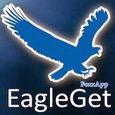 EagleGet Portable 2.0.4.25 Stable 32-64 bit FoxxApp ...
