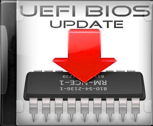 UEFI BIOS Updater 1.69.10 Portable